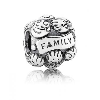 Charm argent family