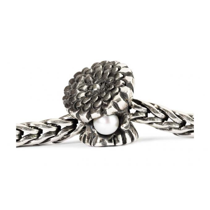 Charms Trollbeads Argent TAGBE-00036 Trollbeads