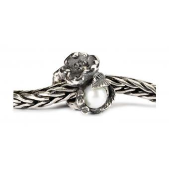 Charms Trollbeads Argent TAGBE-00031