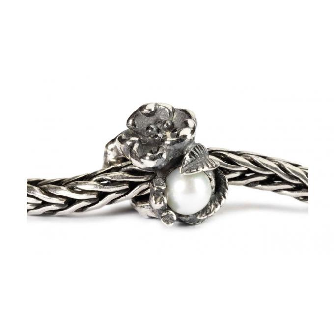 Charms Trollbeads Argent TAGBE-00031 Trollbeads