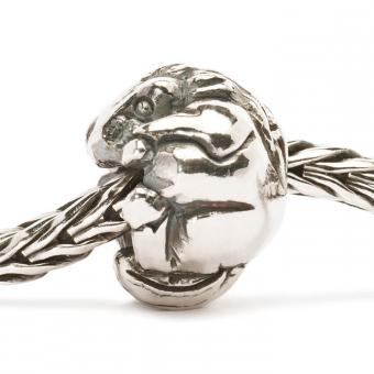 Charms Trollbeads Argent TAGBE-40026
