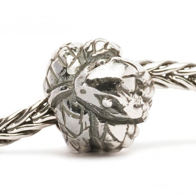 Charms Trollbeads Argent TAGBE-40025 Trollbeads