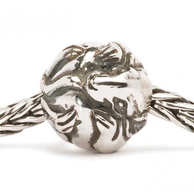 Charms Trollbeads Argent TAGBE-40020 Trollbeads