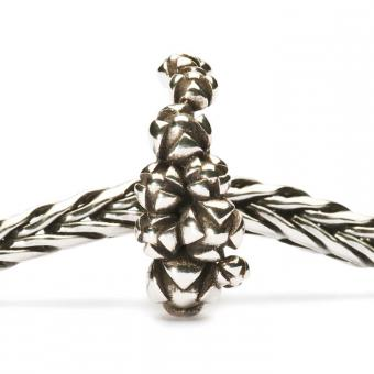 Charms Trollbeads Argent TAGBE-10020