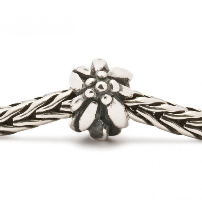 Charms Trollbeads Argent TAGBE-10012 Trollbeads
