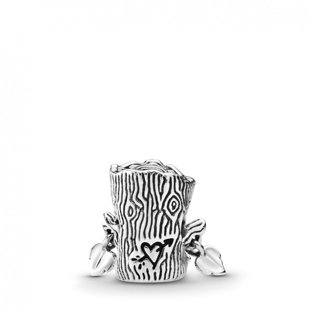 Charms Pandora Argent 798260NRG